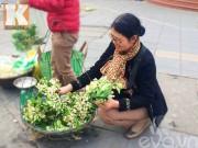 Bếp Eva - Học cô Thanh Ngân MasterChef làm nước hoa bưởi nấu chè