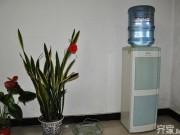 Nhà đẹp - Đặt bình uống nước sai vị trí khiến Ngũ hành tương khắc