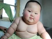 Làm mẹ - Sửng sốt với những em bé béo nhất thế giới