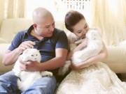 Vi Thảo Nguyên - Cô gái cứu hàng ngàn chó mèo bị bỏ rơi