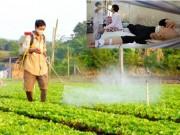 Mua sắm - Giá cả - Người Việt đang 'giãy giụa' giữa mê cung thực phẩm bẩn