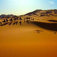 Du lịch Châu Phi