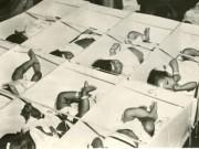Những hình ảnh về Chiến dịch Không vận trẻ em 1975