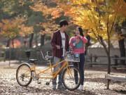 'Chết thèm' nhà Hàn Quốc lãng mạn tại Việt Nam