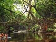 Ngày mới - Bộ tộc hàng trăm năm kéo rễ cây tết thành cầu đi lại