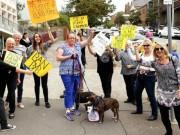 Tin tức - Thanh niên đánh tàn nhẫn 9 con chó gây phẫn nộ