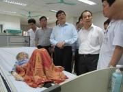 Tin tức - Việt Nam chưa ghi nhận trường hợp nhiễm MERS-CoV