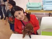 Ở Nhật, nhà giàu mới đủ tiền nuôi chó