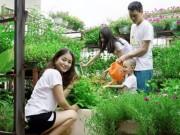 Nhà đẹp - Vườn rau sạch siêu đẹp trên sân thượng để cả nhà cùng chăm