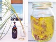 Nhà đẹp - Tự làm tinh dầu sả đẹp da lại chống muỗi chứa virus Zika