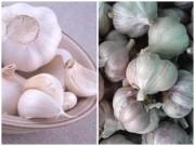 Bếp Eva - Mẹo phân biệt tỏi Việt Nam với tỏi Trung Quốc