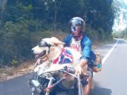 Nhà đẹp - Chàng điển trai Sài Gòn: Người yêu không có nhưng chó có một con