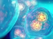 Trung Quốc thực hiện chỉnh sửa gen kháng HIV