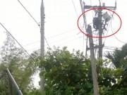 Tin tức - Hi hữu: Cúp điện nhưng 1 công nhân vẫn bị điện giật chết