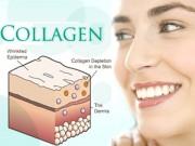 Làm đẹp mỗi ngày - Dùng Collagen loại nào là tốt nhất?