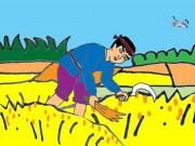 Làm mẹ - Truyện cổ tích: Nông dân với Thành hoàng