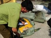Thu giữ nửa tấn thuốc Đông y xuất xứ Trung Quốc