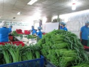 Mua sắm - Giá cả - TP HCM sẽ quản lý thực phẩm từ gốc đến ngọn