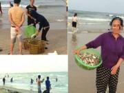 Tin tức - Ai đứng sau nhóm người mua cá chết nhiễm độc? (Bài 1)