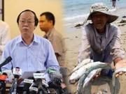 Cá chết hàng loạt ở miền Trung: Chưa thấy mối liên hệ với Formosa