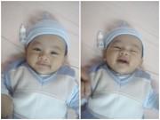 Ảnh đẹp của bé - Trần Hoàng Gia - AD17619 - Bé trai đáng yêu