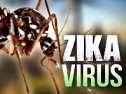 Tin tức - Mỹ phát hiện ca tử vong do virus Zika đầu tiên
