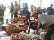 Tin tức - Người Mỹ, Nhật, Úc... ăn mạnh cá biển miền Trung
