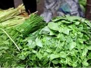 Tin tức - Cách chọn rau không hóa chất, không dùng chổi quét