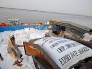 Mua sắm - Giá cả - Tránh bị động khi Thái Lan xả gạo