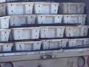Ngày mới - 3 tấn cá đốm đang phân hủy được đưa đi làm nước mắm