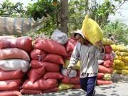 Mua sắm - Giá cả - Thái Lan xả kho gạo khổng lồ, gạo Việt 'nín thở'