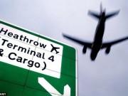 Tin tức - Hành khách tự tử, máy bay hạ cánh khẩn cấp