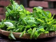 Bếp Eva - Phân biệt rau ngót sạch và rau ngót phun thuốc kích thích