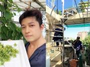 Nhà đẹp - Đã mắt vườn rau trên mái của nhà thiết kế Thuận Việt