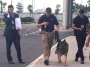 Tin tức - Chó nghiệp vụ theo bảo vệ TT Obama mang hàm Đại úy