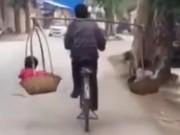 Clip Eva - Ông bố đèo con bằng đôi quang gánh trên xe đạp