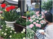 Nhà đẹp - Đường vào nhà ngập sắc hoa của nàng dâu Việt trên đất Nhật