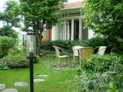 Nhà đẹp - Trồng cây trước nhà cần lưu ý về phong thủy