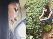 Gia đình Kim Hiền lái ô tô đi hái dâu ở Mỹ