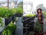 Nhà đẹp - Thèm ẩm thực quê, gái 8x trồng cả vườn rau cho cả nhà thưởng thức