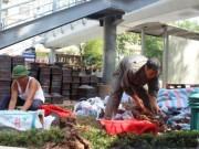 Tin tức - Hà Nội: Phát hiện gần 200 hài cốt trước Trường ĐH Công Đoàn