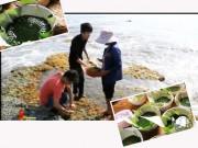 Bếp Eva - Về Cửa Tùng ăn bánh rong biển