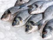 Nhà đẹp - Cách khử mùi hôi tanh trong tủ lạnh do đựng cá
