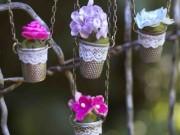 Nhà đẹp - Tự làm vườn treo tại nhà cực độc