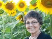Nhà đẹp - Ông lão trồng 6km hoa hướng dương để tưởng nhớ vợ quá cố