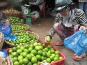 Mua sắm - Giá cả - Thương lái ngừng mua, người trồng chanh khóc ròng