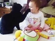 """Clip Eva - Phì cười xem mèo """"trông"""" bé lúc mẹ vắng nhà"""