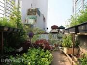 """Nhà đẹp - """"Đột nhập"""" vườn rau sân thượng quanh năm xanh mướt của bà chủ 8X"""