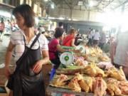 """Mua sắm - Giá cả - Sau gà Mỹ, gà Thái Lan lại """"chèn ép"""" gà nội"""