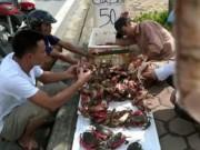 Mua sắm - Giá cả - Giật mình cua biển siêu rẻ bán tràn lan trên vỉa hè HN